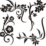 Floral ornament series. A set of 4 exquisite floral ornaments Royalty Free Stock Photos