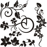 Floral ornament series Royalty Free Stock Images