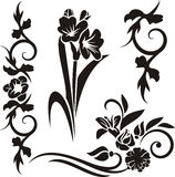 Floral ornament series Royalty Free Stock Image