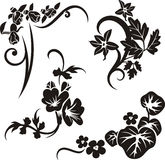 Floral ornament series Royalty Free Stock Photos