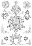Floral ornament vector Stock Photo