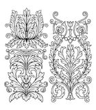 Floral ornament vector Royalty Free Stock Photo