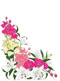 Floral ornament vector card Stock Photography