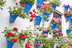 FLORAL ORNAMENT ON WALLS. Typical inner court in Cordoba, Andalusia, Spain,with blue pots with red geraniums hanging from the walls Royalty Free Stock Image
