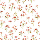 Floral ornamental seamless pattern. Flower garden background. Fl. Floral ornamental white seamless pattern. Flower garden background. Flourish garden texture Royalty Free Stock Images