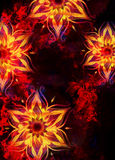 Floral ornamental structure with filigrane pattern mandala on abstract background. Fire Effect Stock Photo