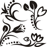 Floral ornaments vector illustration