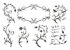 Floral Ornaments. Decorative, persect for backgrounds, designs Stock Photography