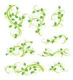 Floral ornaments. Perfect for designs, banners, decoration, adds Stock Photo
