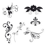 Floral Ornaments (Vector). Set of six floral ornaments illustration. Vector file with separated itens Stock Illustration