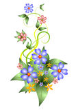 Floral ornaments Royalty Free Stock Photos