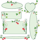 Floral ornate frames set. With strawberries Stock Photography