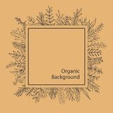 Floral outlined branches twigs black and beige organic square frame. Background Stock Photo