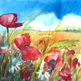 Floral painted landscape watercolour poppy painting illustration with blue sky and corn background Ink and watercolor painting.