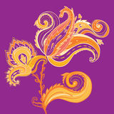 Floral paisley design Royalty Free Stock Images
