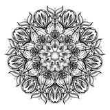 Floral paisley ornament. Ethnic decorative elements. Hand drawn background. Royalty Free Stock Photography