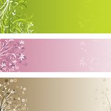 Floral panels Royalty Free Stock Images