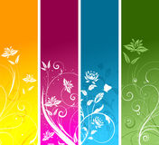 Floral panels Royalty Free Stock Image