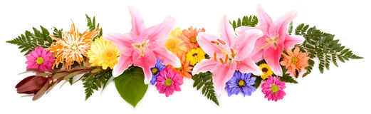 Floral Panorama Stock Photos