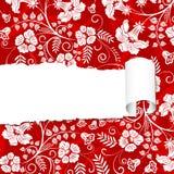 floral paper torn Στοκ Εικόνες