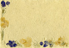 Floral parchment Royalty Free Stock Images