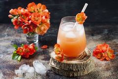 Floral pastel peach and pink brunch cocktail garnished with quince flowers over old rustic background.  Royalty Free Stock Photography