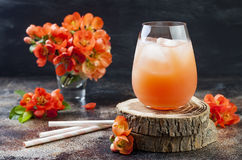 Floral pastel peach and pink brunch cocktail garnished with quince flowers over old rustic background.  Stock Images