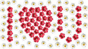 Floral pattern. I love you word made by flowers Stock Image