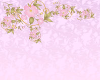Floral pattern. Romantic floral pattern background for invitations Royalty Free Stock Photos