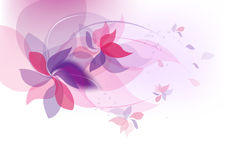 Floral pattern. Background for invitations Stock Image