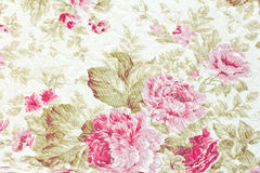 Floral pattern. Royalty Free Stock Photography