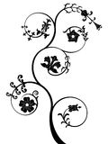 Floral pattern. Vector floral pattern black color on white background Royalty Free Stock Images