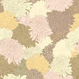 Floral pattern. Background with chrysanthemum. Stock Photos