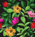 Floral pattern background Stock Image