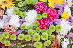 Floral pattern. Background from various flowers. Selective focus royalty free stock photo
