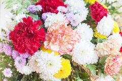 Floral pattern. Background from various flowers. Selective focus royalty free stock images