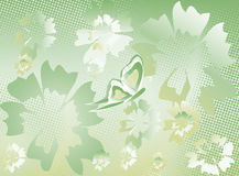 Floral pattern background  vector Royalty Free Stock Photography