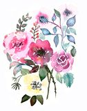 Hand-painted texture watercolor royalty free illustration