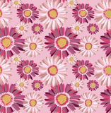 Floral pattern. Beautiful seamless floral pattern, gerbera vector illustration Royalty Free Stock Photography