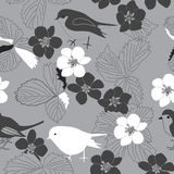 Floral pattern with birds and leaves Royalty Free Stock Photos