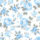 Floral pattern with blue roses Royalty Free Stock Image