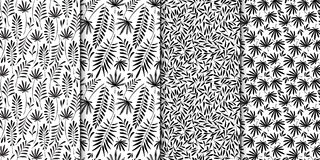 Floral pattern collection. Leaves texture. Stylish abstract vector plant ornamental background black and white set. Royalty Free Stock Photography