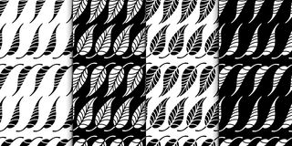 Floral pattern collection. Leaves texture. Stylish abstract vector plant ornamental background black and white set. Royalty Free Stock Photo