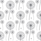 Floral pattern of dandelions Royalty Free Stock Photography