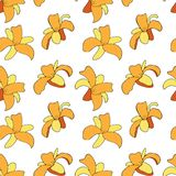 Floral pattern with daylilys. Vector illustration. royalty free illustration