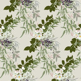 Floral pattern in earthy tones. With jasmine, narcissus and black berries royalty free illustration