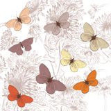 Floral pattern with flowers and butterflies Royalty Free Stock Photos