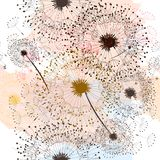 Floral pattern hand drawn dandelions Royalty Free Stock Image