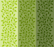 Floral pattern with ilex. Decorative background. Vector illustration Stock Images