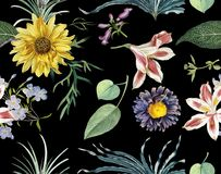 Free Floral Pattern In The Many Kind Of Sunflower Tropical Botanical Motifs Scattered Random. Seamless Black Background Royalty Free Stock Images - 138285849